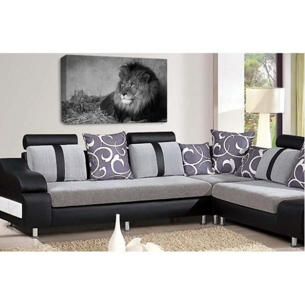The King Lion Animal Canvas Wall Art Picture Print